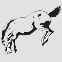 Лошадь-7