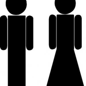 наклейка на туалет Леди и Дж-ны