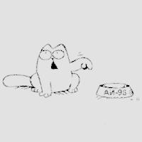 Кот Саймон2