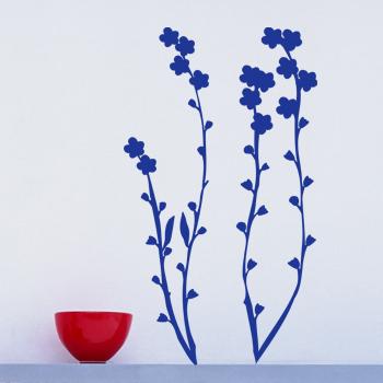 Декоративный узор - комнатное растение