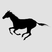 Лошадь-4