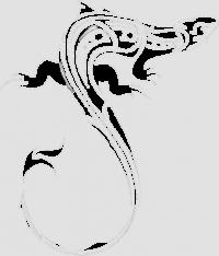 Ящерица-4