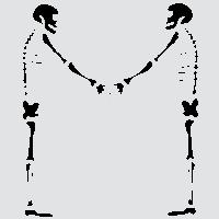 Два друга-скелета