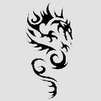 Дракон-13