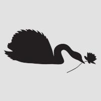 Лебедь с розой