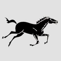 Лошадь-3